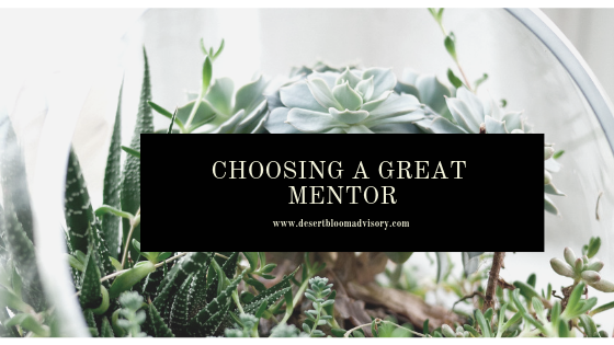 How to Choose a Great Mentor