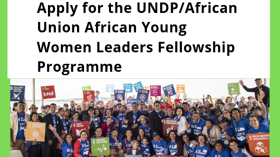 African Union Young Women Leadership Fellowship Programme